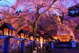 南湖神社ライトアップ