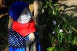 明月院の青地蔵