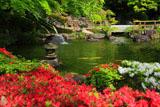 長谷寺のツツジと放生池