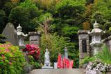 鎌倉東光寺 山門のツツジ