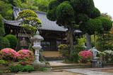 鎌倉等覚寺のツツジと本堂