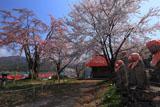 六地蔵と小塩の桜
