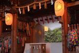 伊佐須美神社楼門越しの薄墨桜