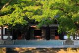 新緑の円覚寺仏殿