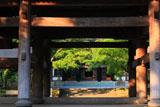 円覚寺山門越しの新緑と仏殿