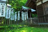 新緑の白旗神社