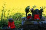 大原 石仏と稲穂