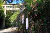 梨木神社 ハギと二の鳥居