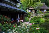 京都等持院 フヨウと書院