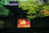 京都 常照皇寺勅額門越しの紅葉