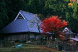 京都久多 徳恩寺の紅葉
