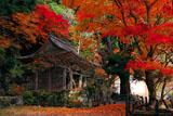 紅葉の峰定寺境内