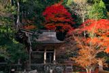 京都 峰定寺仁王門と紅葉
