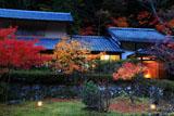 京都花脊 紅葉と美山荘山の棟