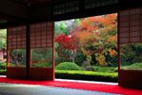泉涌寺雲龍院 客殿から庭園の紅葉