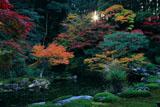 南禅寺南禅院 庭園の三色紅葉