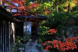 大原寺宝泉院 玄関前の紅葉