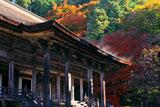 勝林院 本堂と紅葉