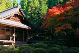 大原寺来迎院 紅葉と本堂