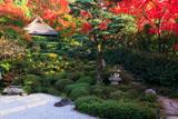 京都金福寺 芭蕉庵と紅葉