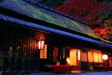 京都 平野屋と紅葉