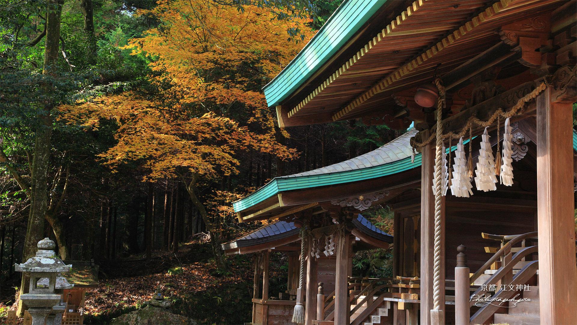 江文神社 社殿と紅葉