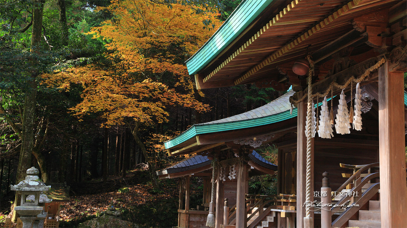 江文神社 社殿と紅葉 壁紙