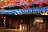 紅葉と京見峠茶屋