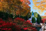 しょうざん 紅葉と聖オーガスティン教会