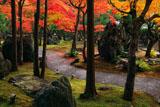 しょうざん 紅葉の北庭の紀州石