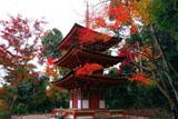 浄瑠璃寺 紅葉の三重塔