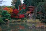 浄瑠璃寺 紅葉の庭園と三重塔
