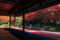 高台寺圓徳院
