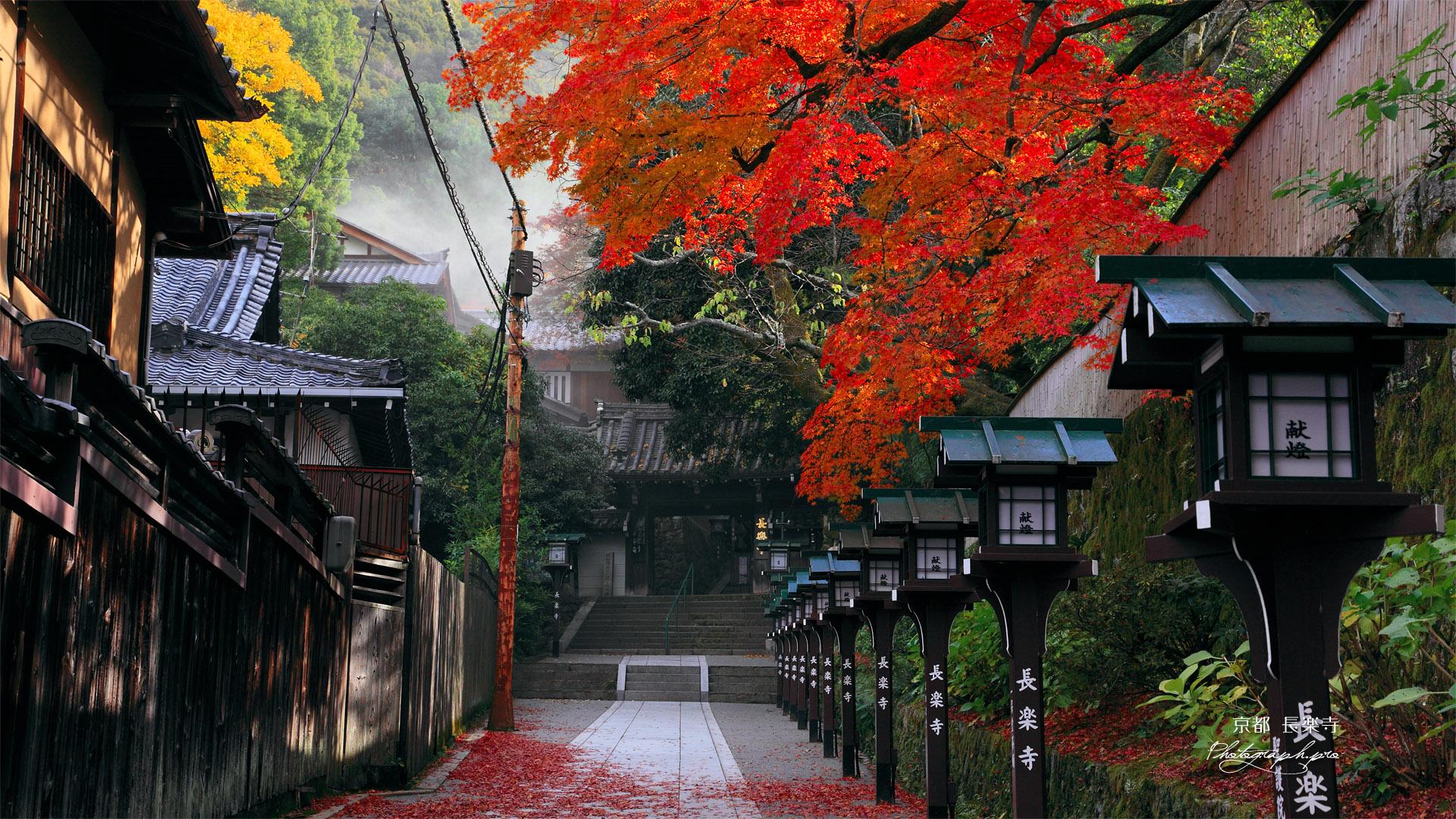 京都長楽寺 参道の燈籠と紅葉 の壁紙 19x1080
