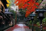 京都長楽寺 参道の燈籠と紅葉