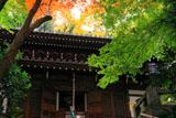 京都長楽寺 紅葉の本堂