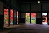 建仁寺 方丈からの紅葉