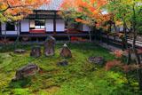 建仁寺 紅葉の潮音庭と小書院