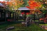 建仁寺 潮音庭の紅葉2010