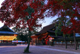 八坂神社 紅葉の境内
