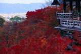 清水寺 紅葉越しの舞台と京都市街