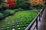 東福寺方丈北庭の紅葉
