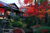 南禅寺天授庵 南庭の紅葉