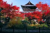 南禅寺天授庵からの紅葉と三門