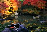 蓮華寺 蹲踞と紅葉