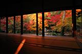 蓮華寺 書院から紅葉の庭園
