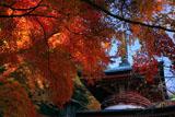 京都法輪寺 紅葉の多宝塔