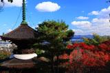 常寂光寺 紅葉の多宝塔と京都市街