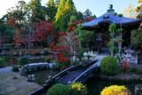 清凉寺庭園の紅葉