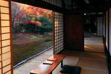 清凉寺 書院から紅葉の庭園